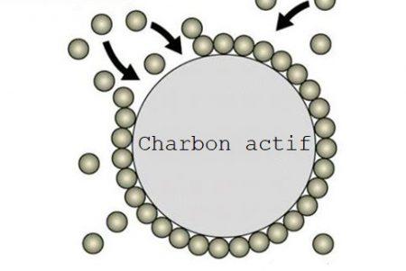 adsorption charbon actif